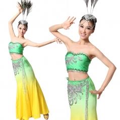 新款女士傣族舞蹈服装 民族服装 舞台演出服装表演服装